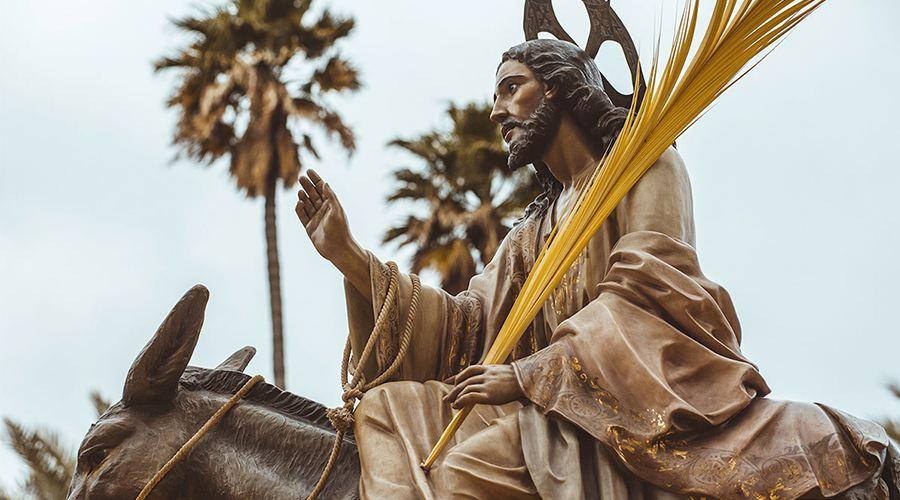 信仰旅程|圣枝主日-骑毛驴儿的男人来了