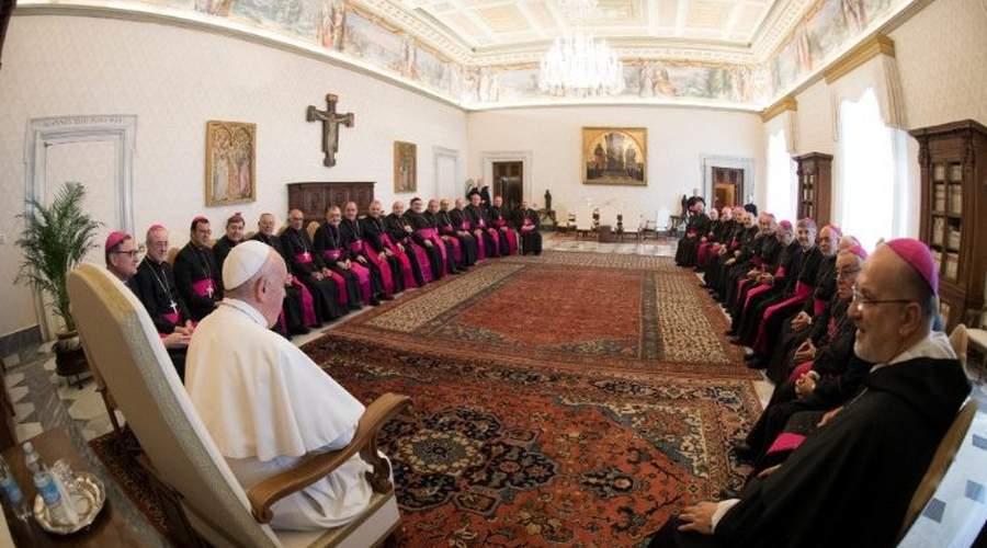 教宗接见阿根廷第二批述职主教:做活泼的见证并与民相伴