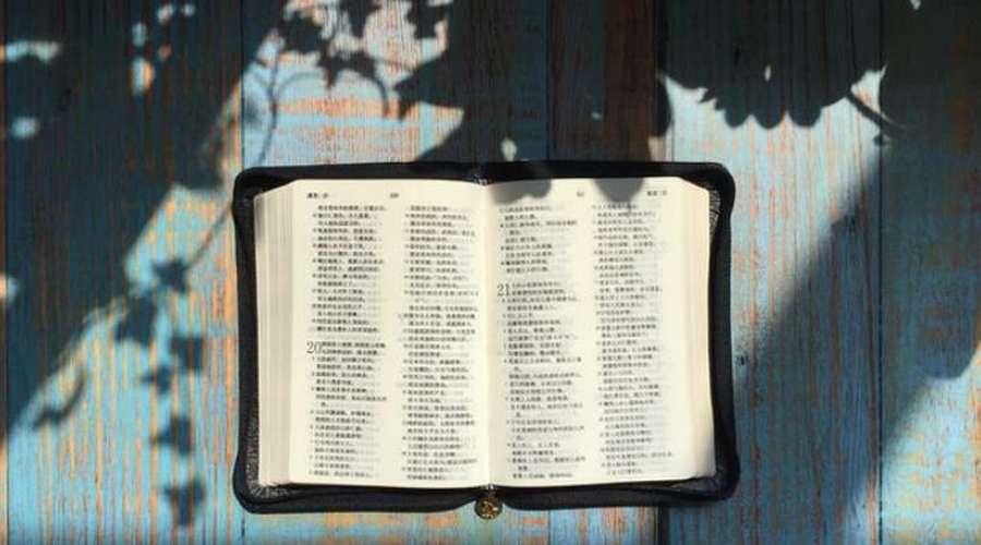 信仰旅程|一本特别的圣经